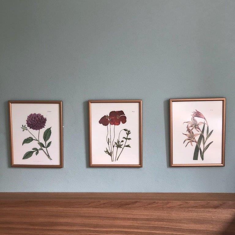 Wand Bilder